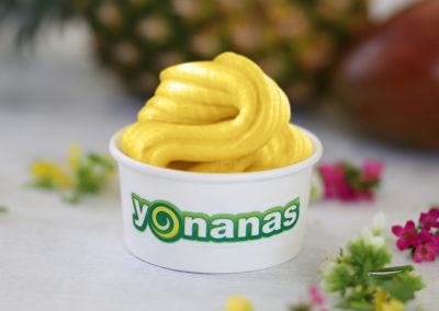 Yonanas Pineapple Mango Blend
